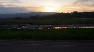 Roadside sunset on the bus from Cebu to Dumaguete