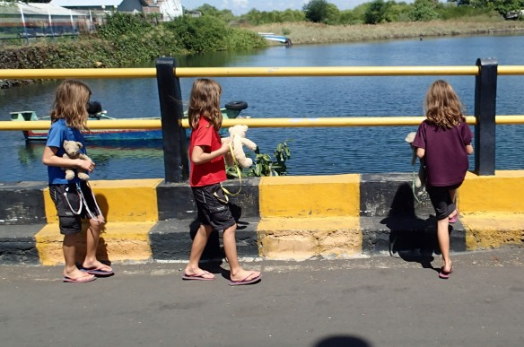 "Walking to the ferry with ""dodobears"" in Sape, Sumbawa"